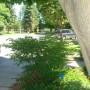 Windsor exterior (2)